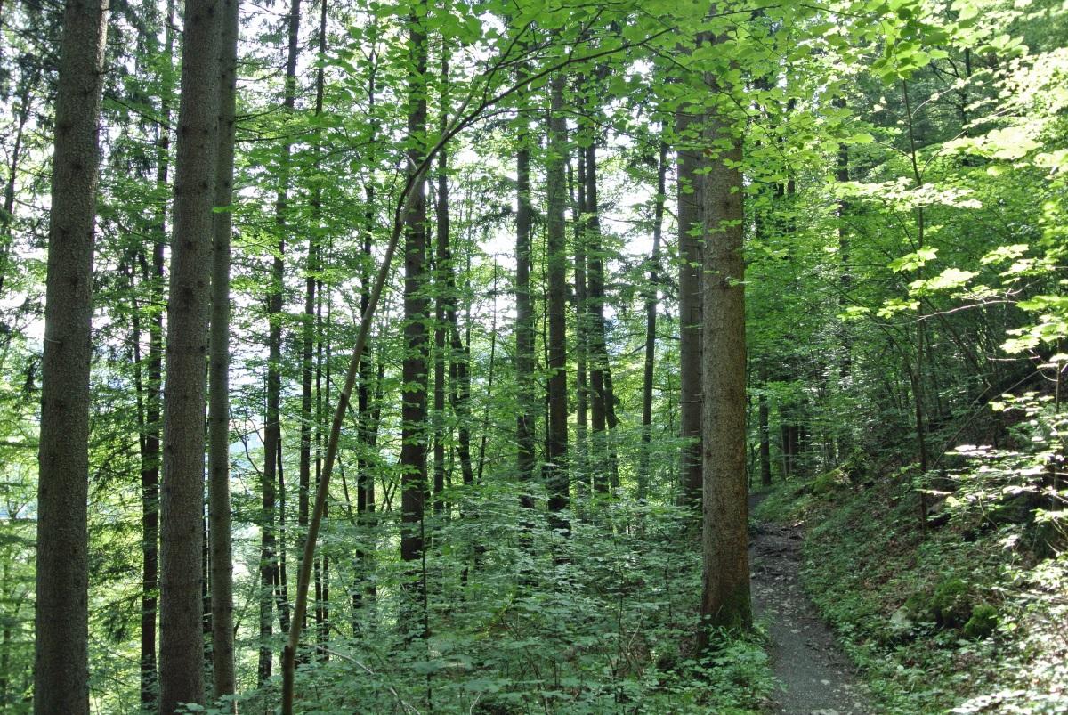 Riessersee-Partnachklamm_fraeulein-draussen_3