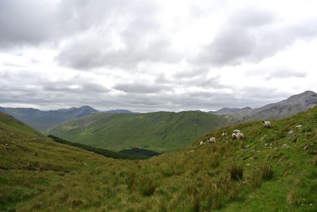 wandern_irland_twelve-pins_connemara_fraeulein-draussen_6