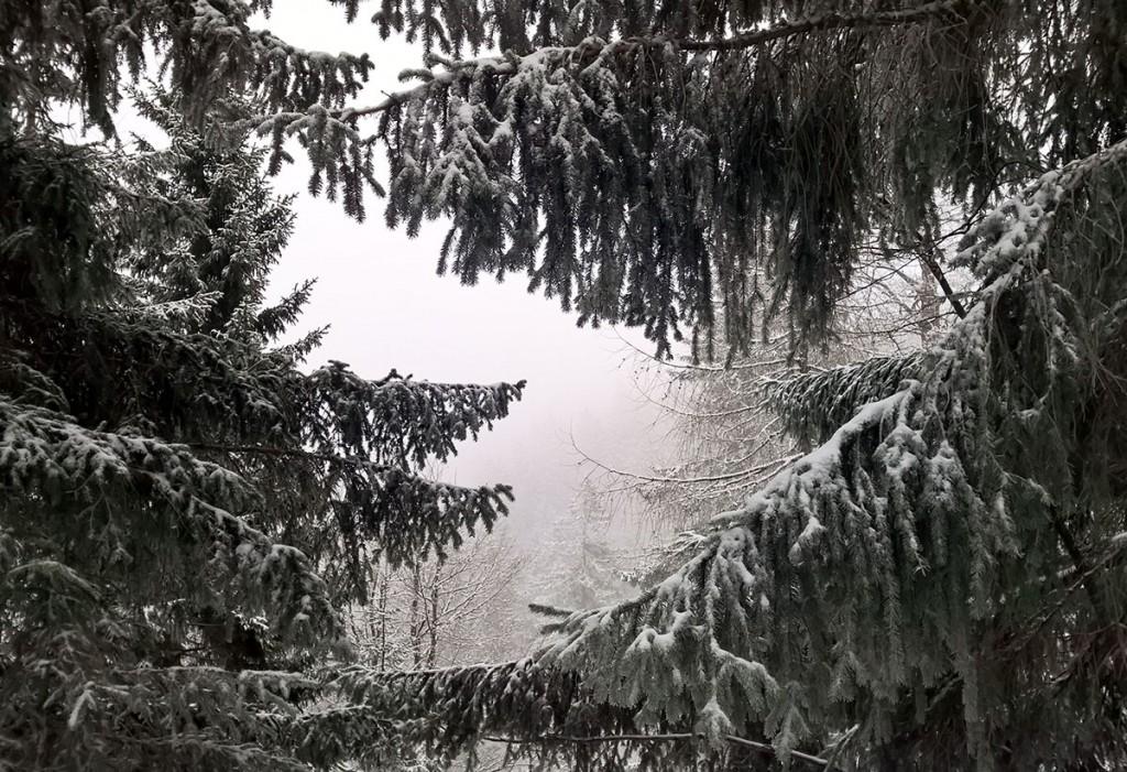 Winterwandern-Baumgartenschneid-fraeulein-draussen-3