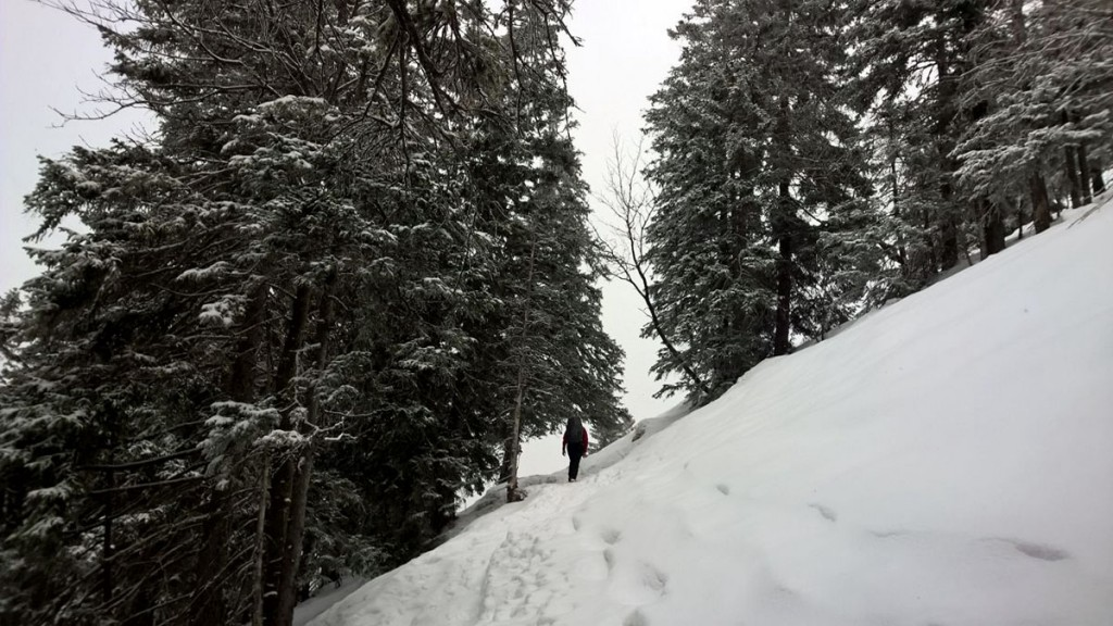 Winterwandern-Baumgartenschneid-fraeulein-draussen-4