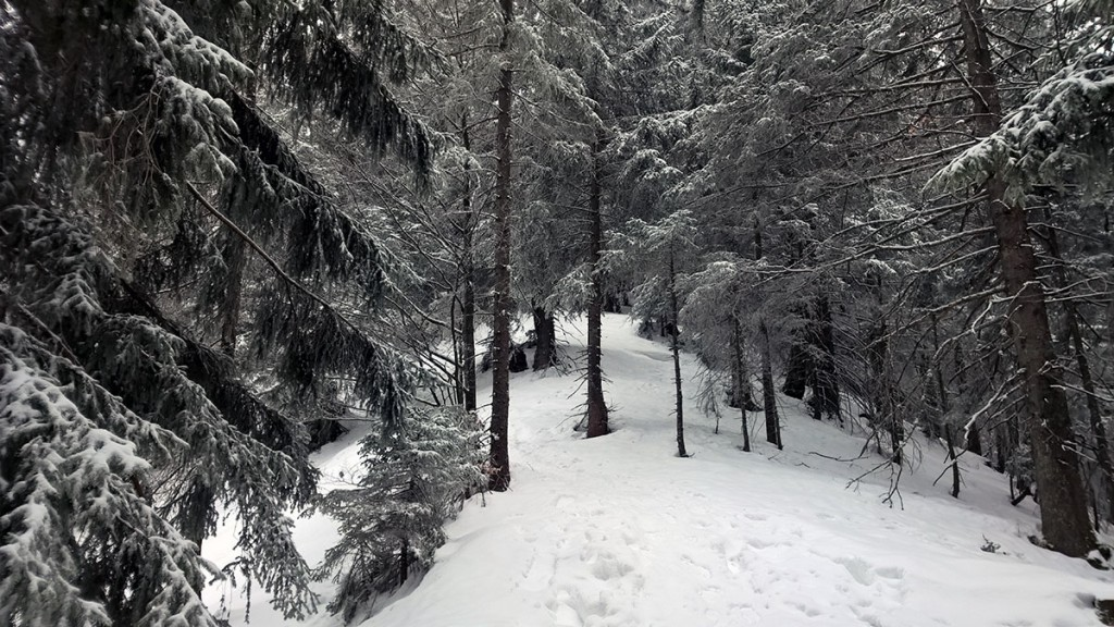 Winterwandern-Baumgartenschneid-fraeulein-draussen-7