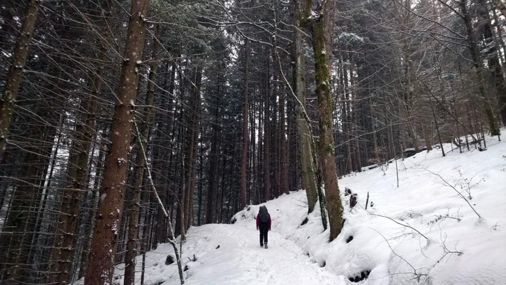 Winterwandern-Baumgartenschneid-fraeulein-draussen-9