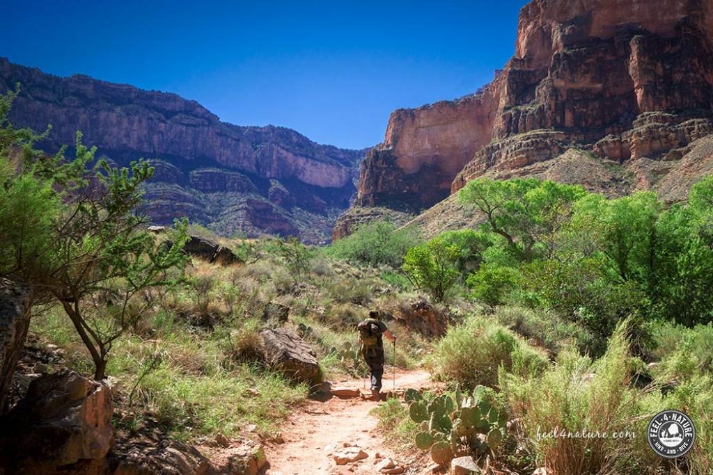 bright-angel-trail-titel
