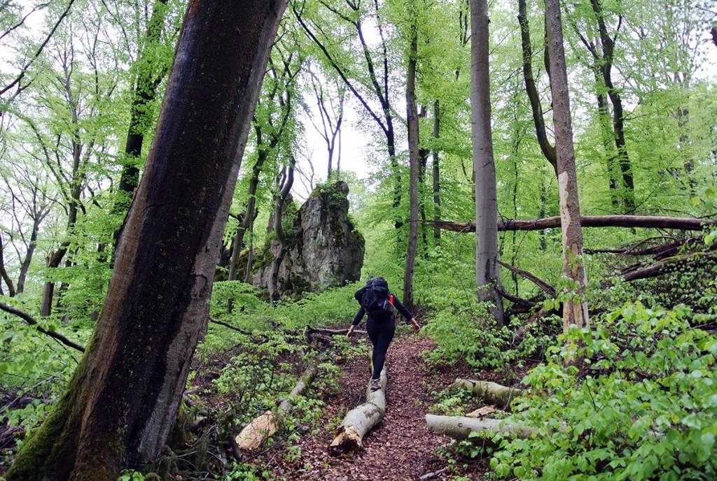 wandern-altmuehltal-schleifenweg_fraeulein-draussen