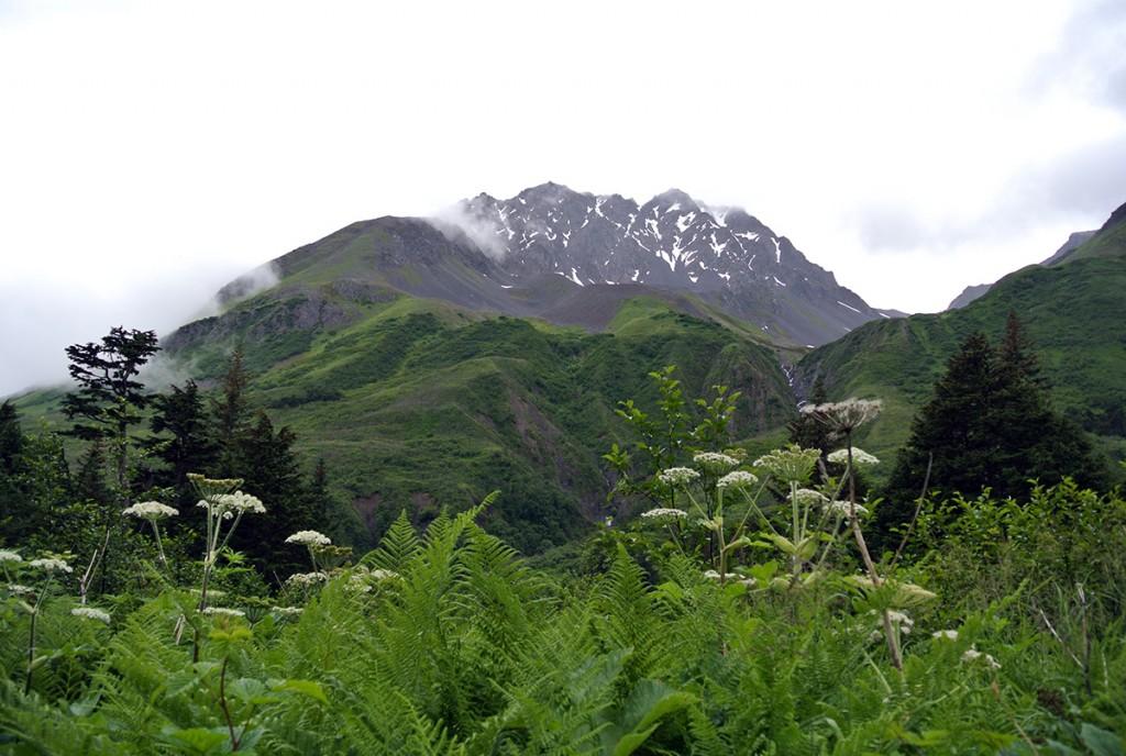 Wanderung-lost-lake-kenai-alaska_fraeulein-draussen