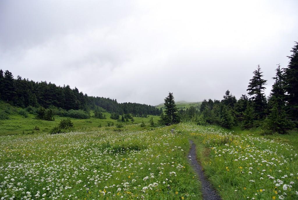 wanderwerg-lost-lake-kenai-alaska_fraeulein-draussen