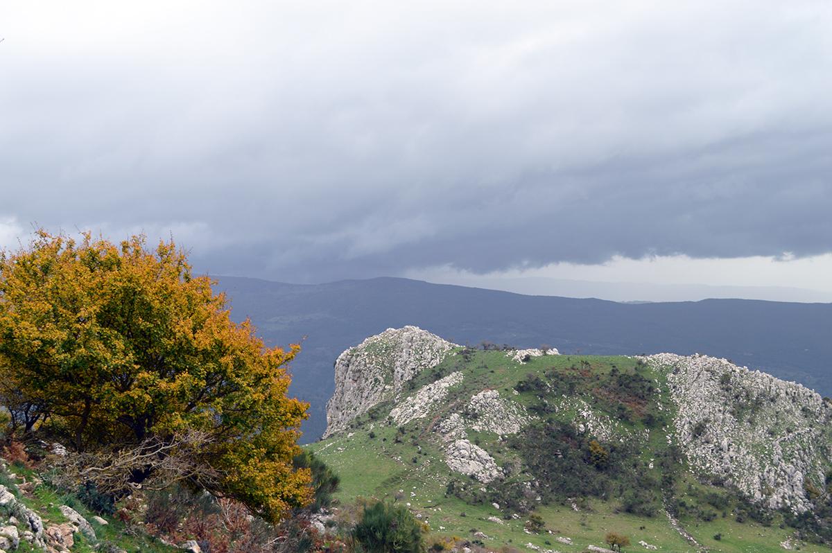 sizilien-wandern-rocche-del-crasto-nebrodi_10_fraeulein-draussen