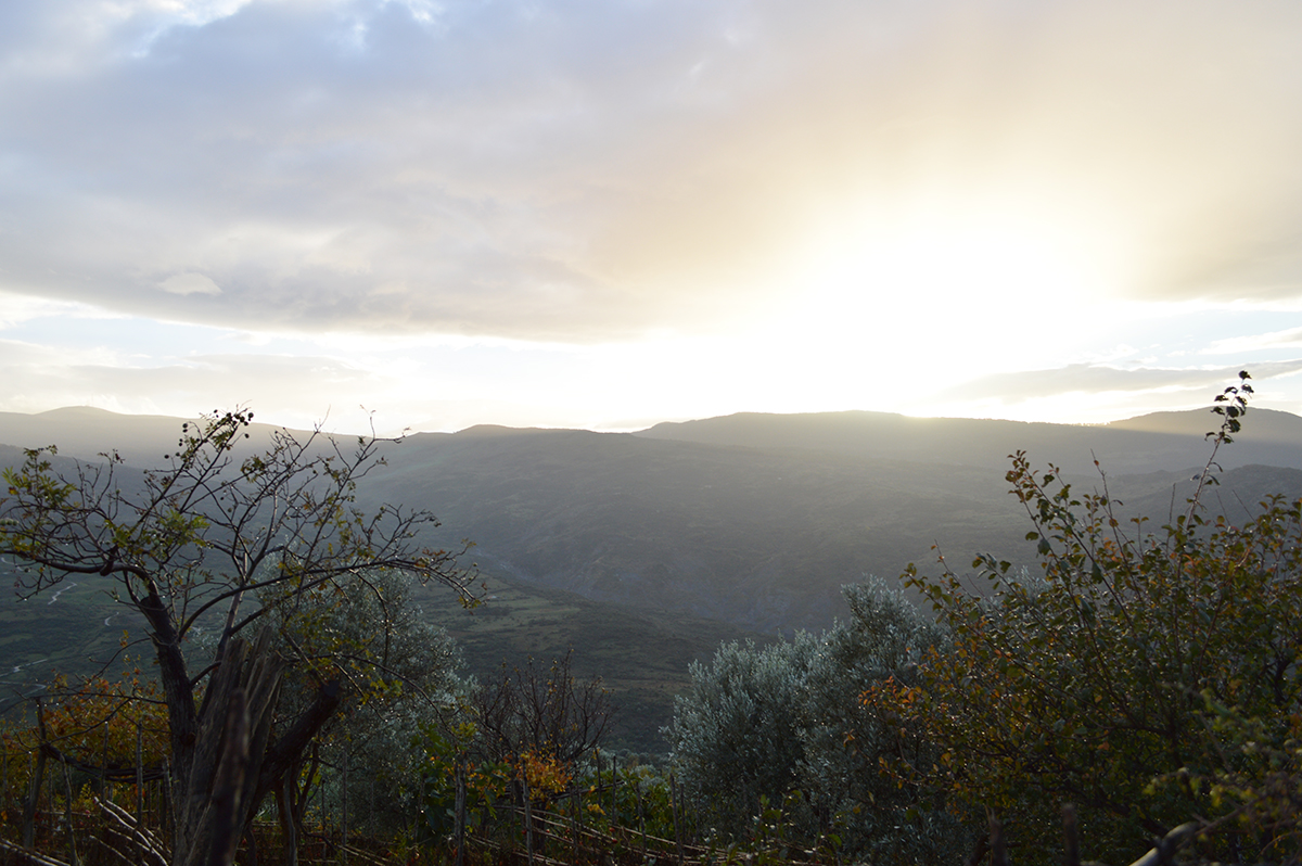 sizilien-wandern-rocche-del-crasto-nebrodi_13_fraeulein-draussen