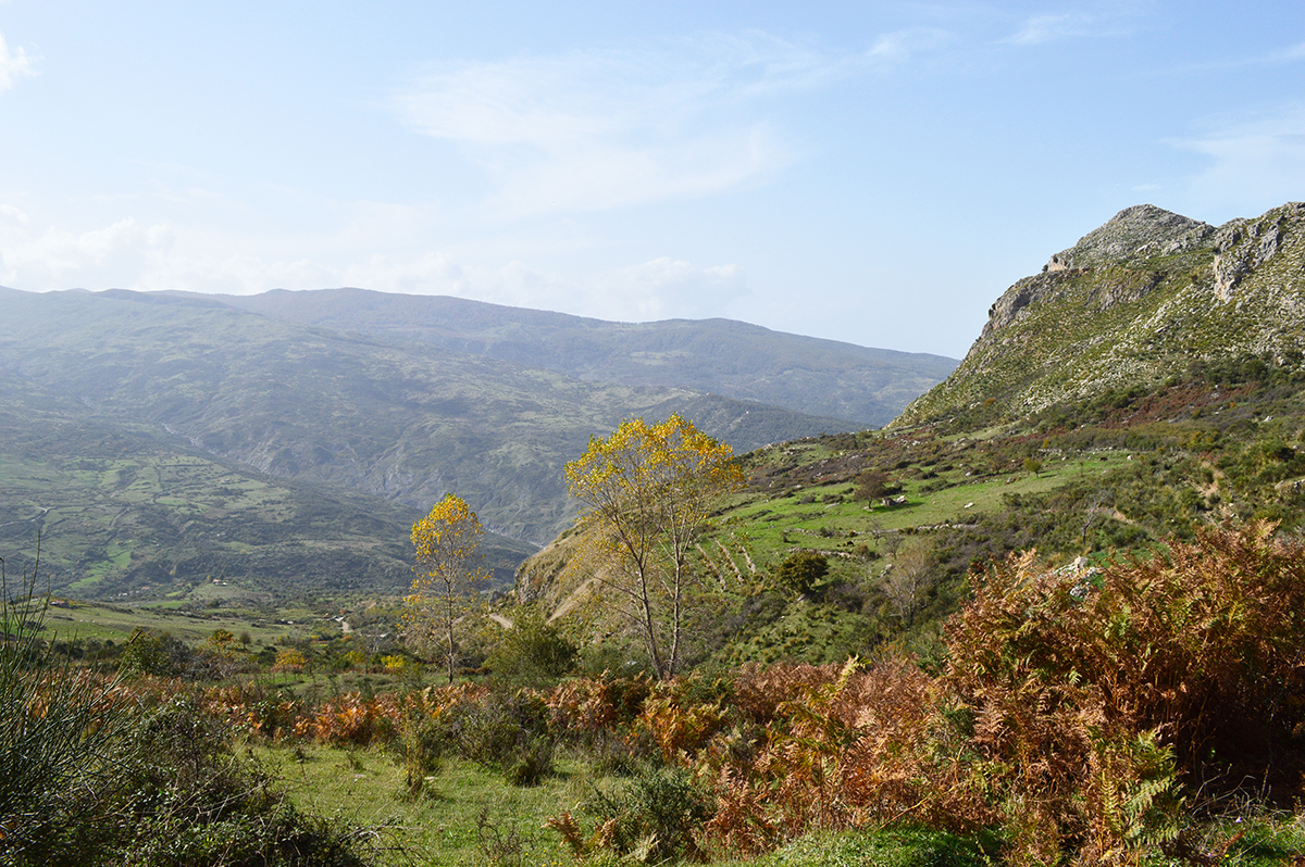 sizilien-wandern-rocche-del-crasto-nebrodi_4_fraeulein-draussen