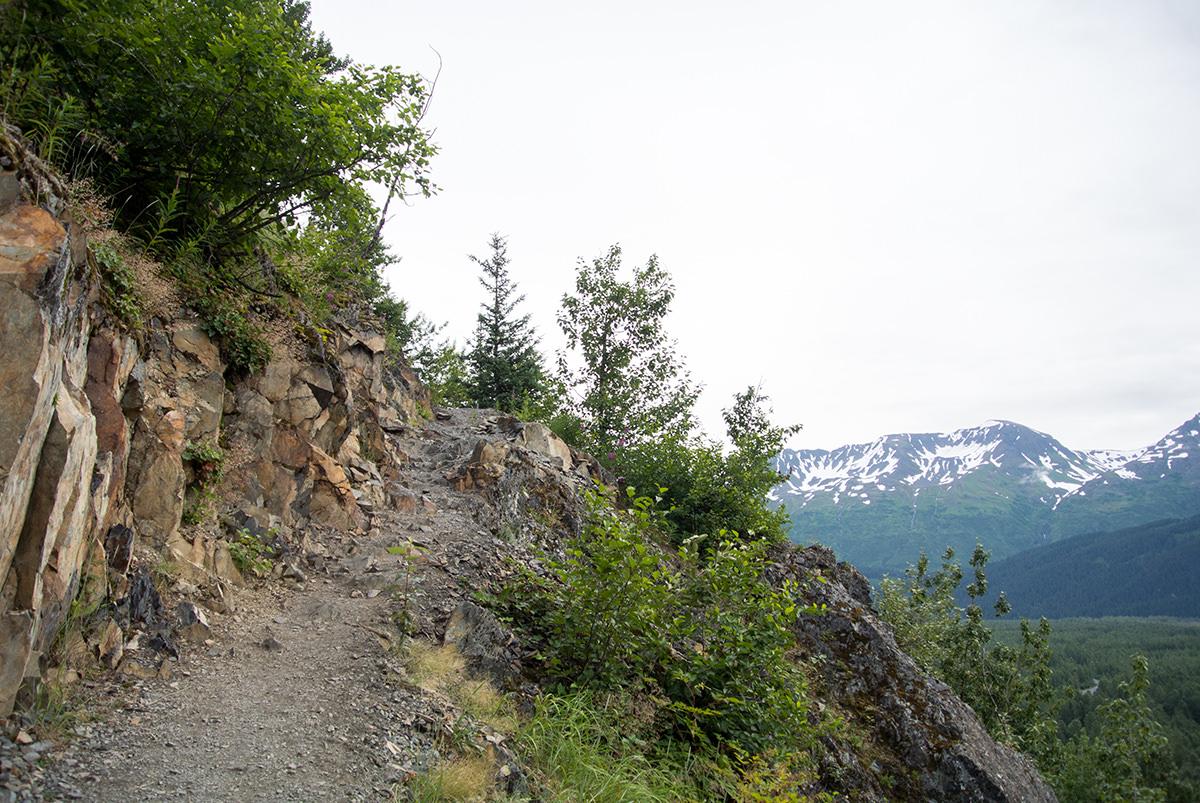 Wanderung-zum-Harding-Icefield-Alaska_fraeulein-draussen