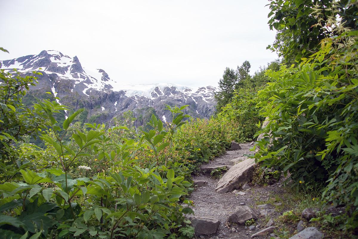 Immer wieder gibt der Trail Blicke auf die umliegende Bergwelt frei