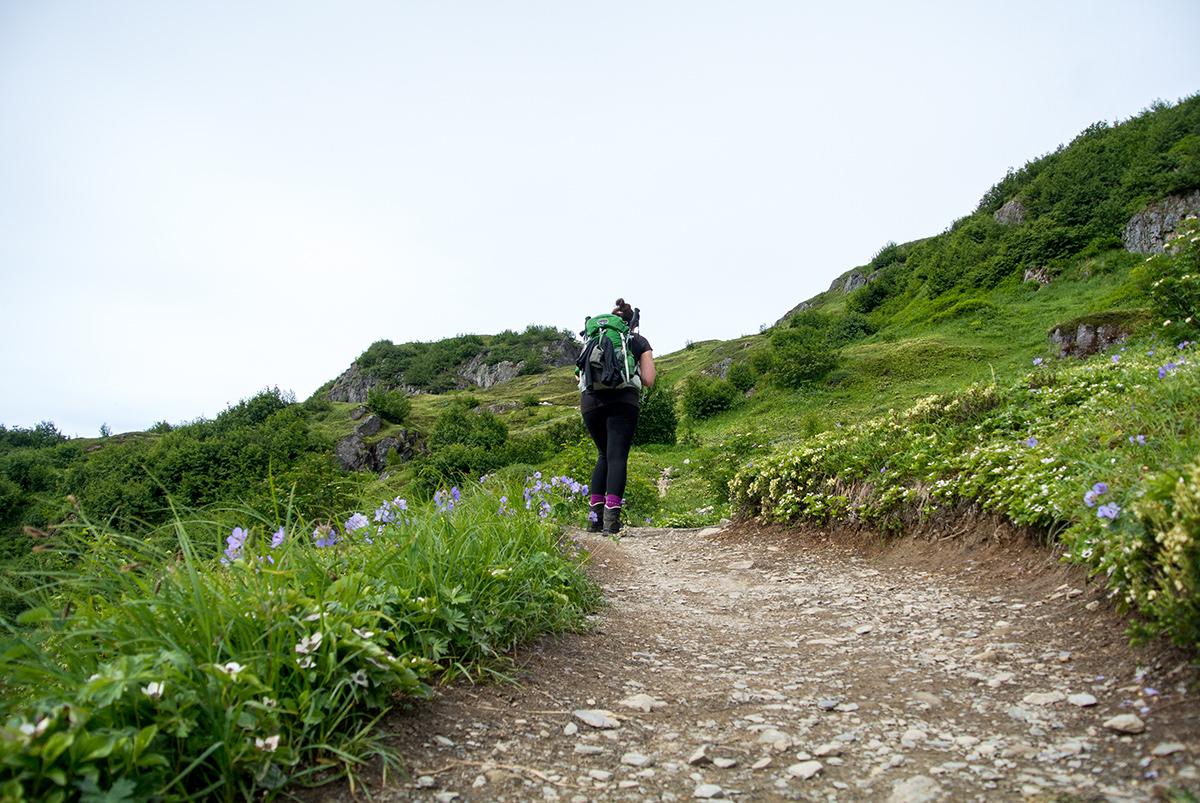 Wanderung-zum-Harding-Icefield-Alaska_fraeulein-draussen_5