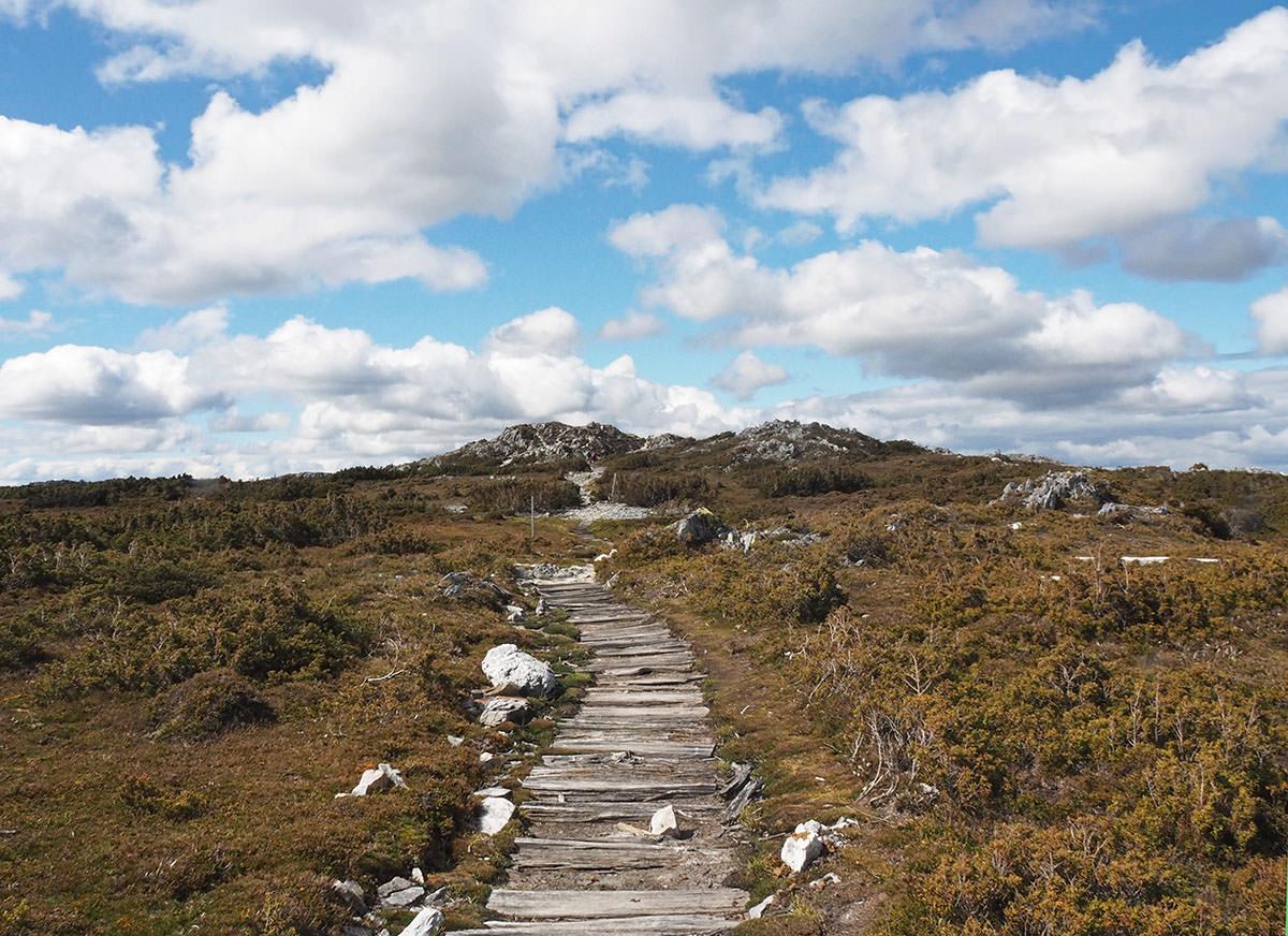 Wanderweg aus alten Holzplanken