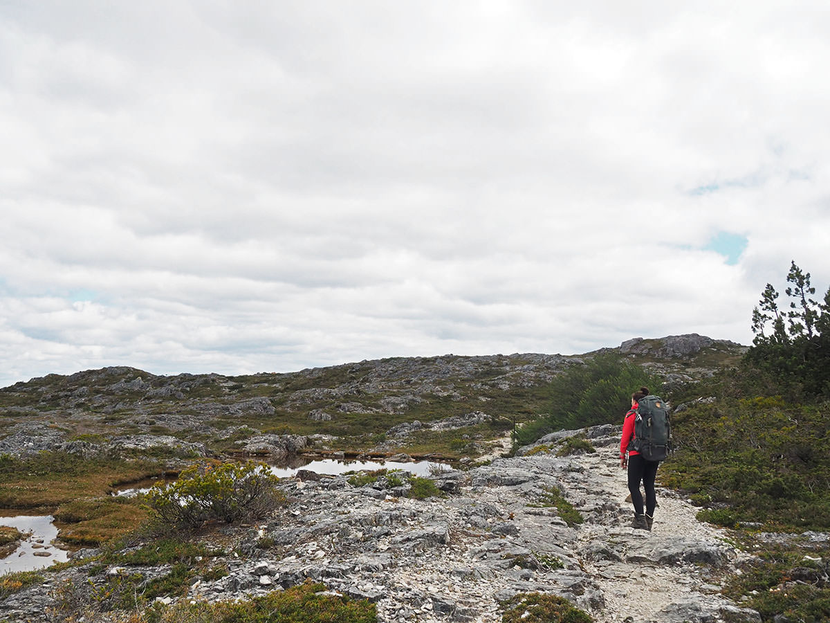 Trekking im Cradle Mountain Nationalpark