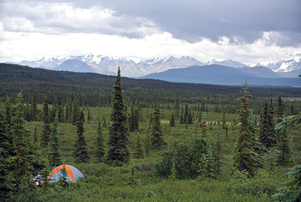 Wonderlake Campground im Denali Natioanlpark