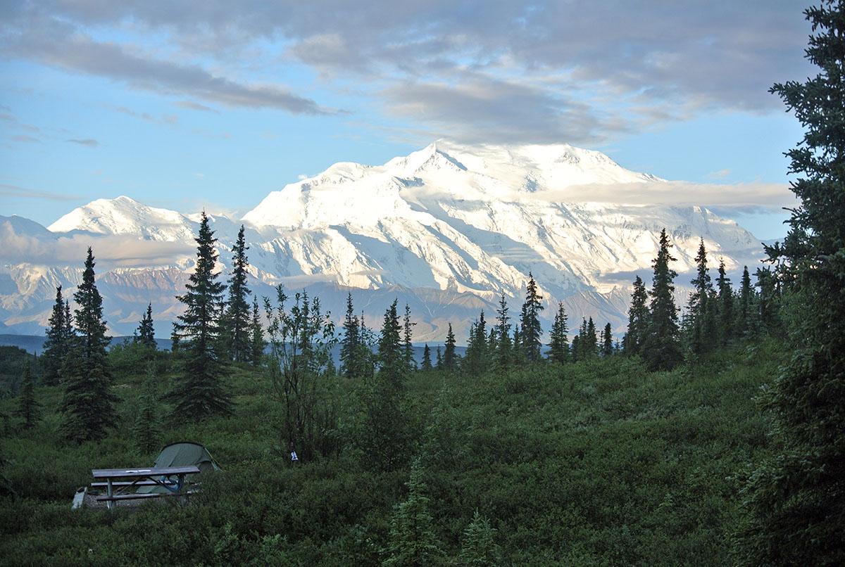 Blick auf den Mount McKinley vom Wonderlake Campground aus