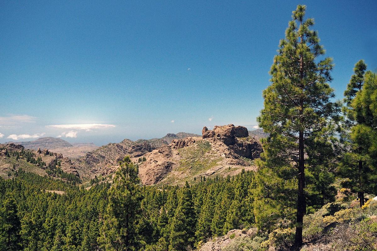 Wanderung zum Roque Nublo auf Gran Canaria