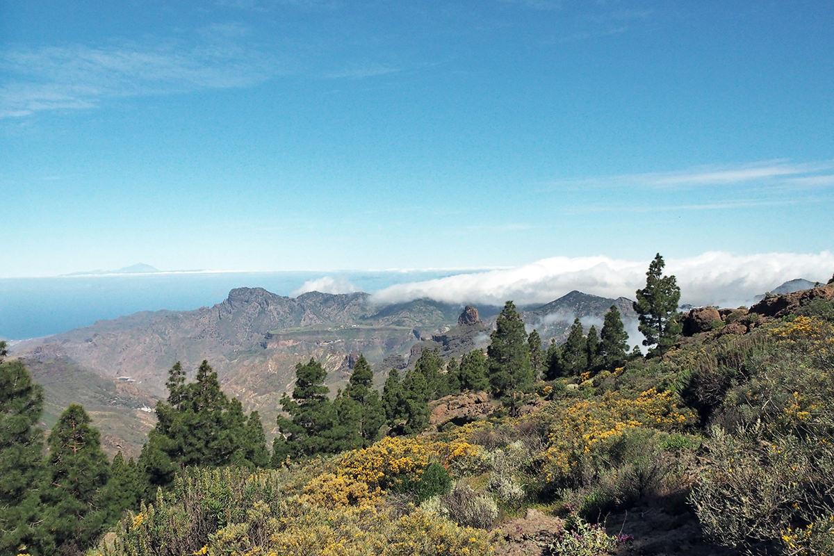 wandern-zum-roque-nublo-gran-canaria