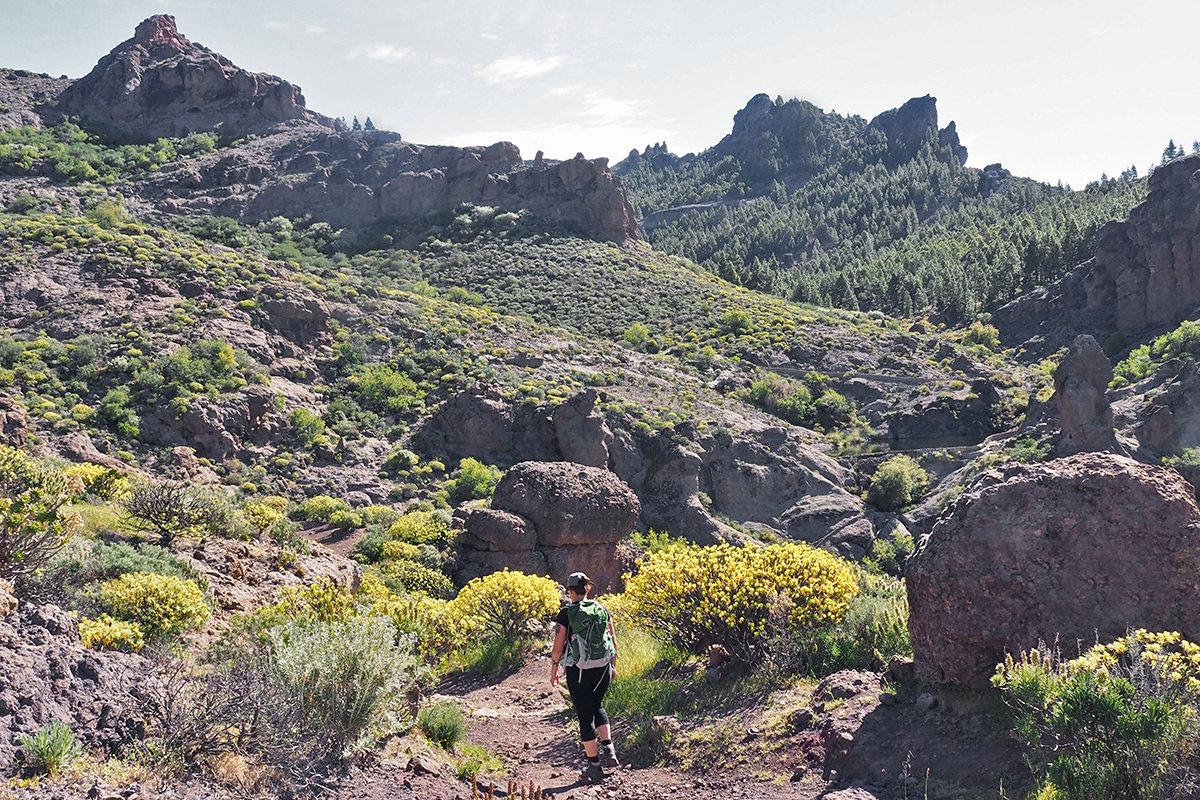 Wanderung zum Wahrzeichen Gran Canarias