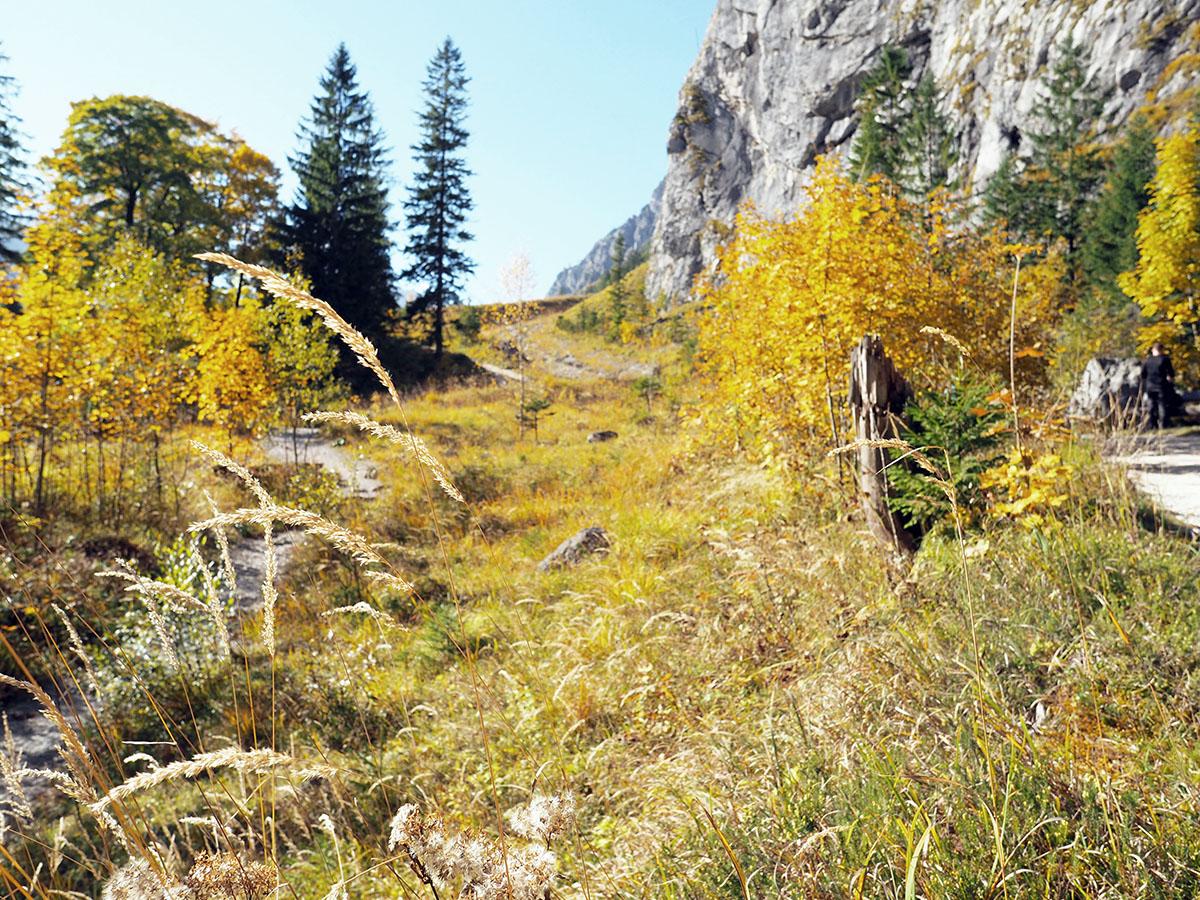 Wanderung zur Wimbachgrieshütte