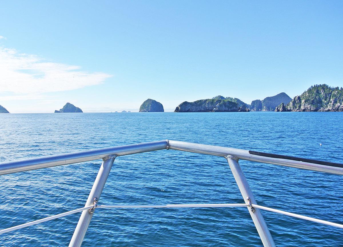 Bootstour durch den Kenai Fjord