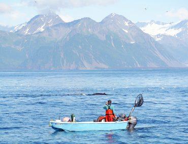 Fischer in Alaska