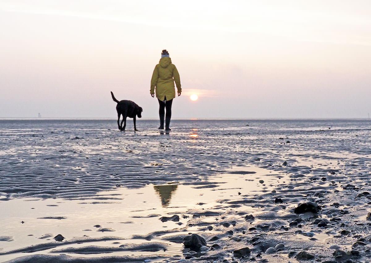 Reiseerinnerung 2016: Mit Hund am Nordseestrand Schillig