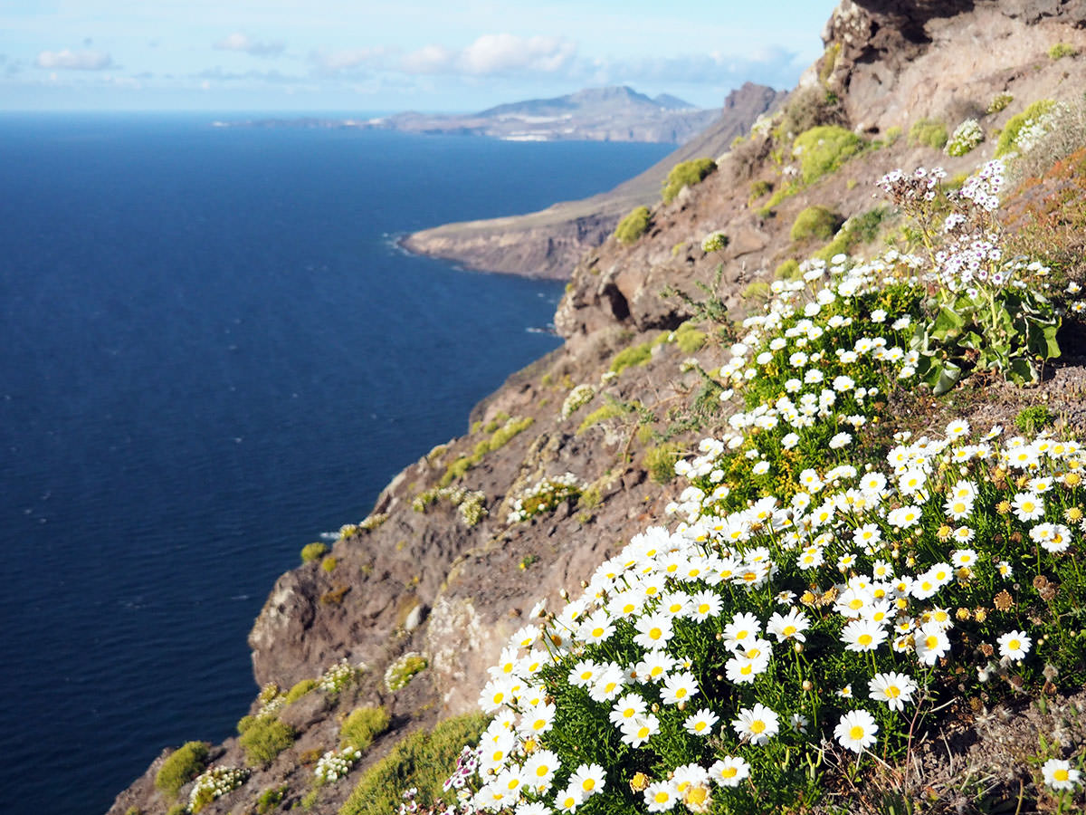 Steilküste auf Gran Canaria