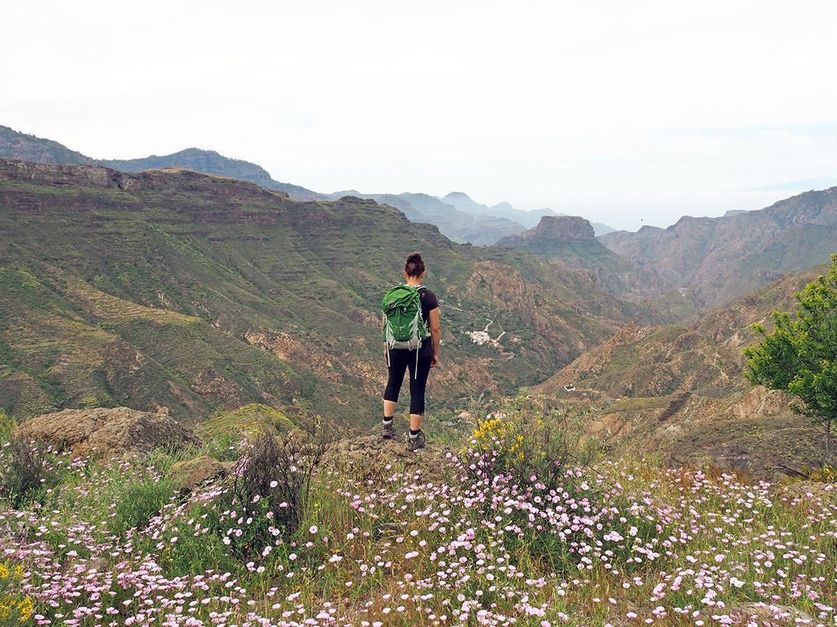 Zwischen Canyons und Kakteen – Wandern auf Gran Canaria
