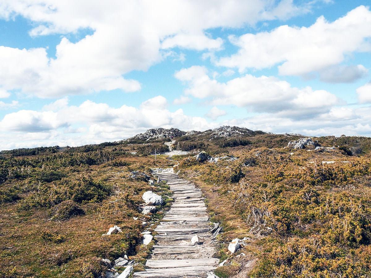 Wanderrouten auf Tasmanien
