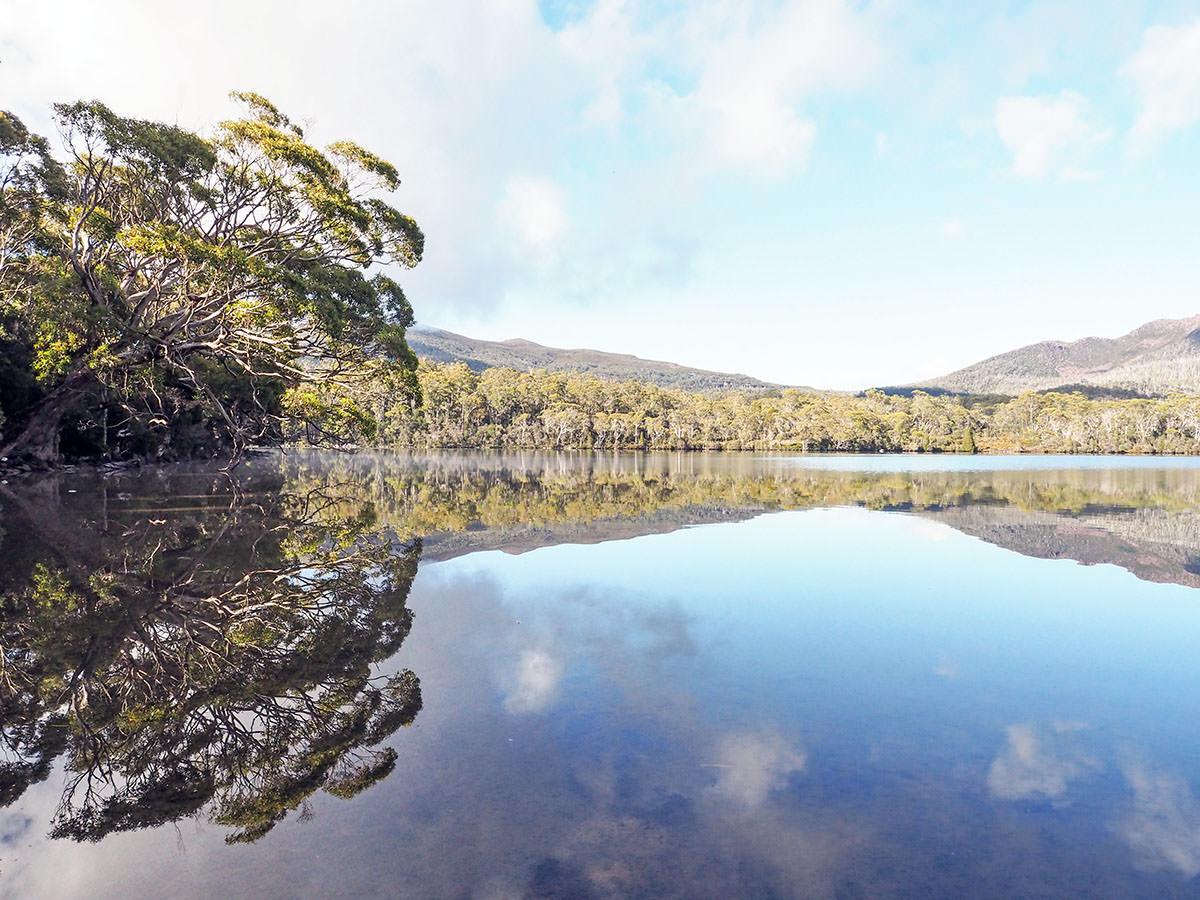 Ein See im Lake St Clair Nationalpark auf Tasmanien