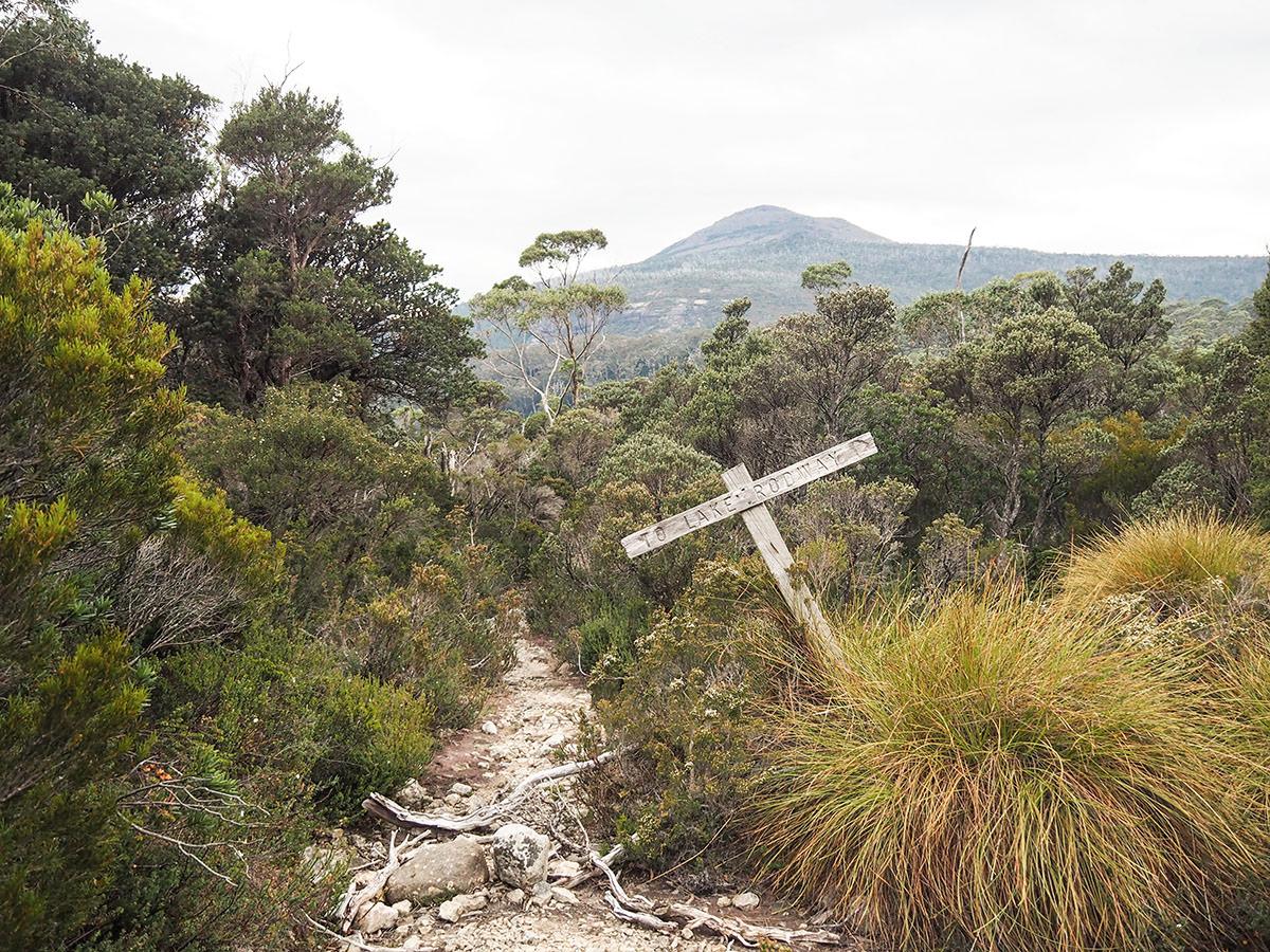 Wanderwege auf Tasmanien