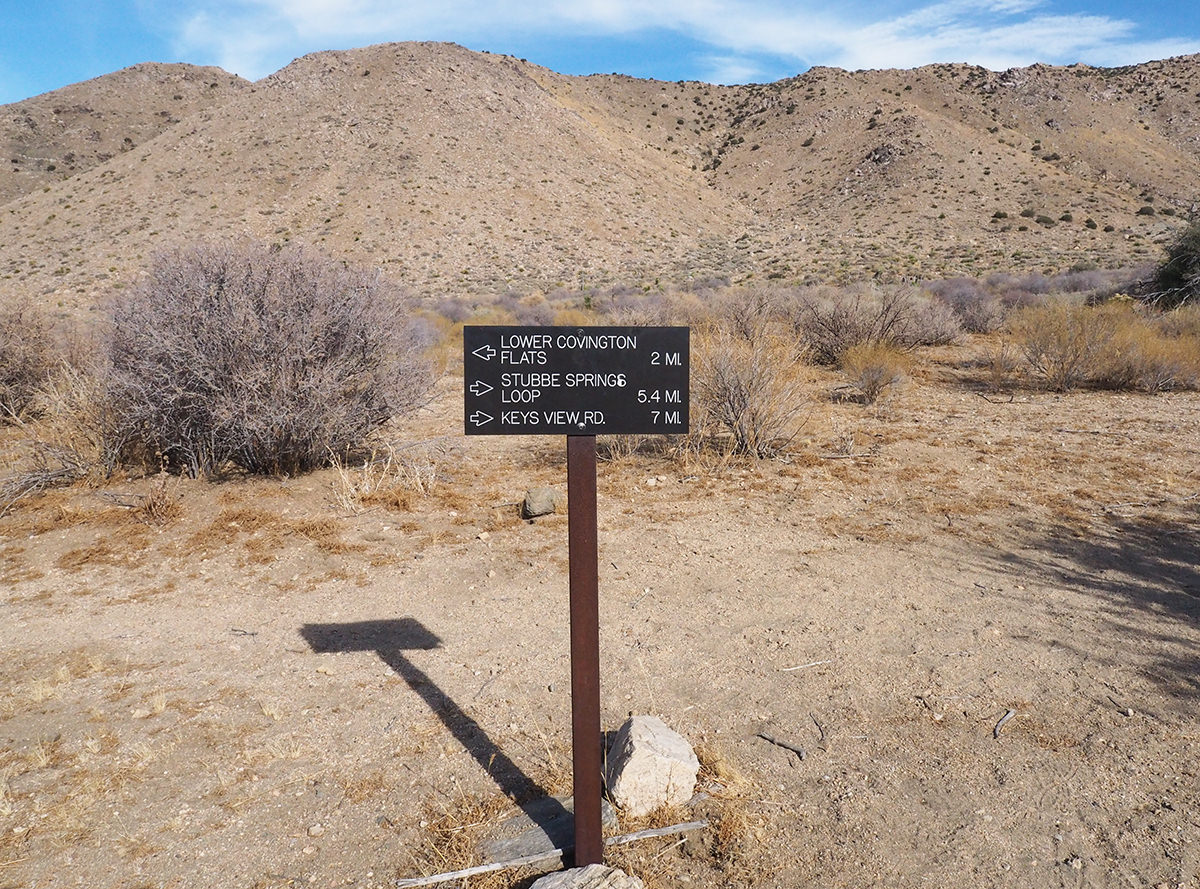 Mehrtageswanderung im Joshua Tree Nationalpark