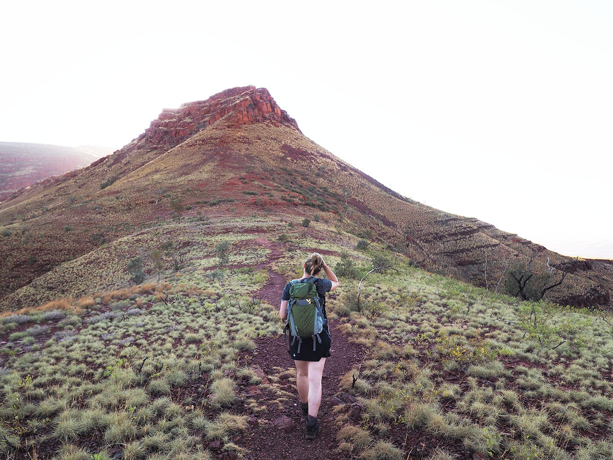 Bergwanderung auf Mount Bruce in Westaustralien