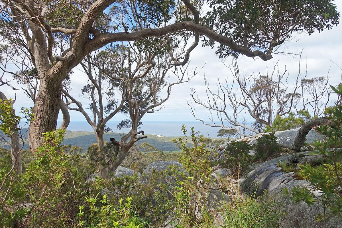 Bergwanderung zum Monkey Rock in Westaustralien
