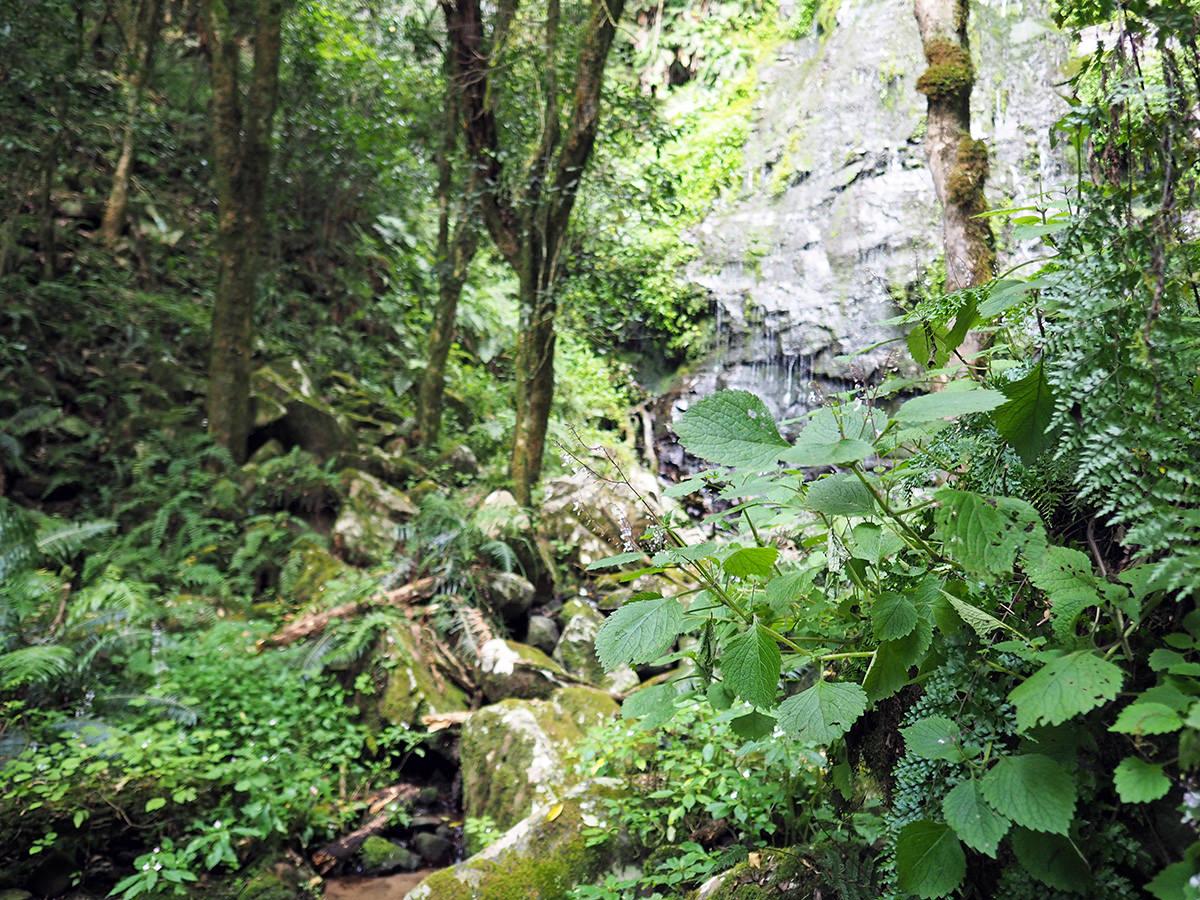 amatola trail wasserfall