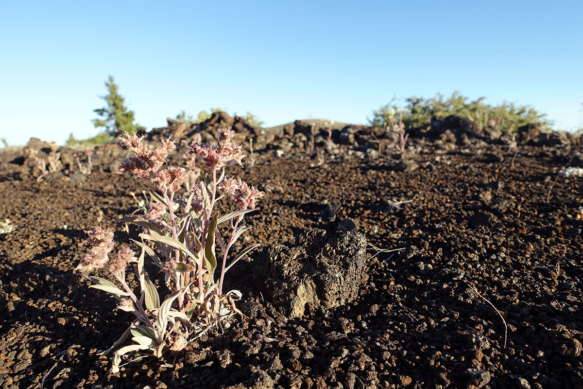 wandern im craters of the moon national monument in idaho