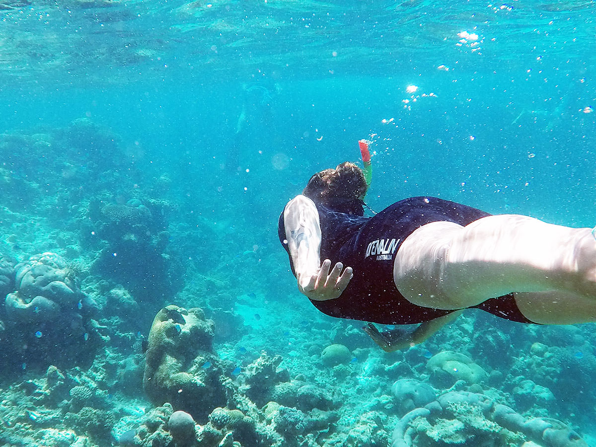 Schnorcheltour in Coral Bay am Ningaloo Reef