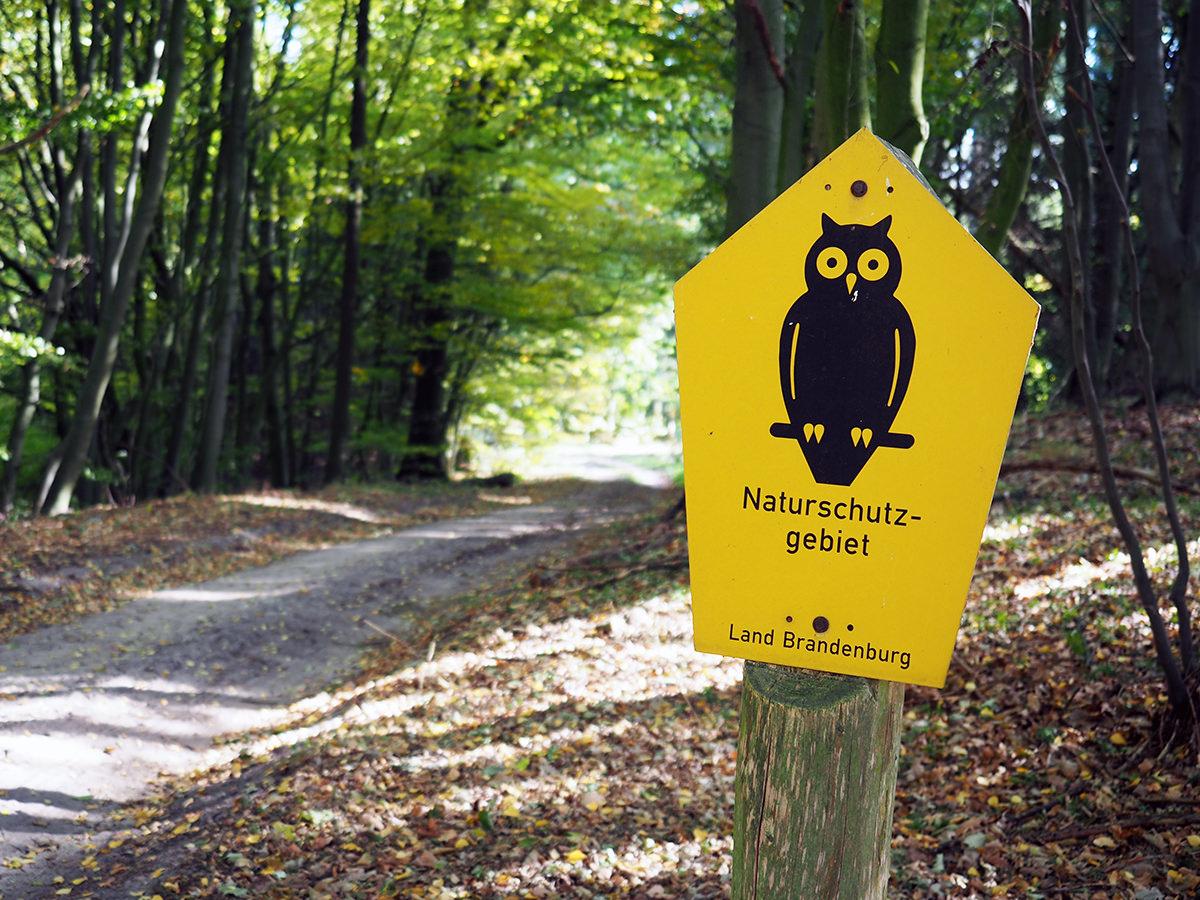 brandenburg naturschutzgebiet
