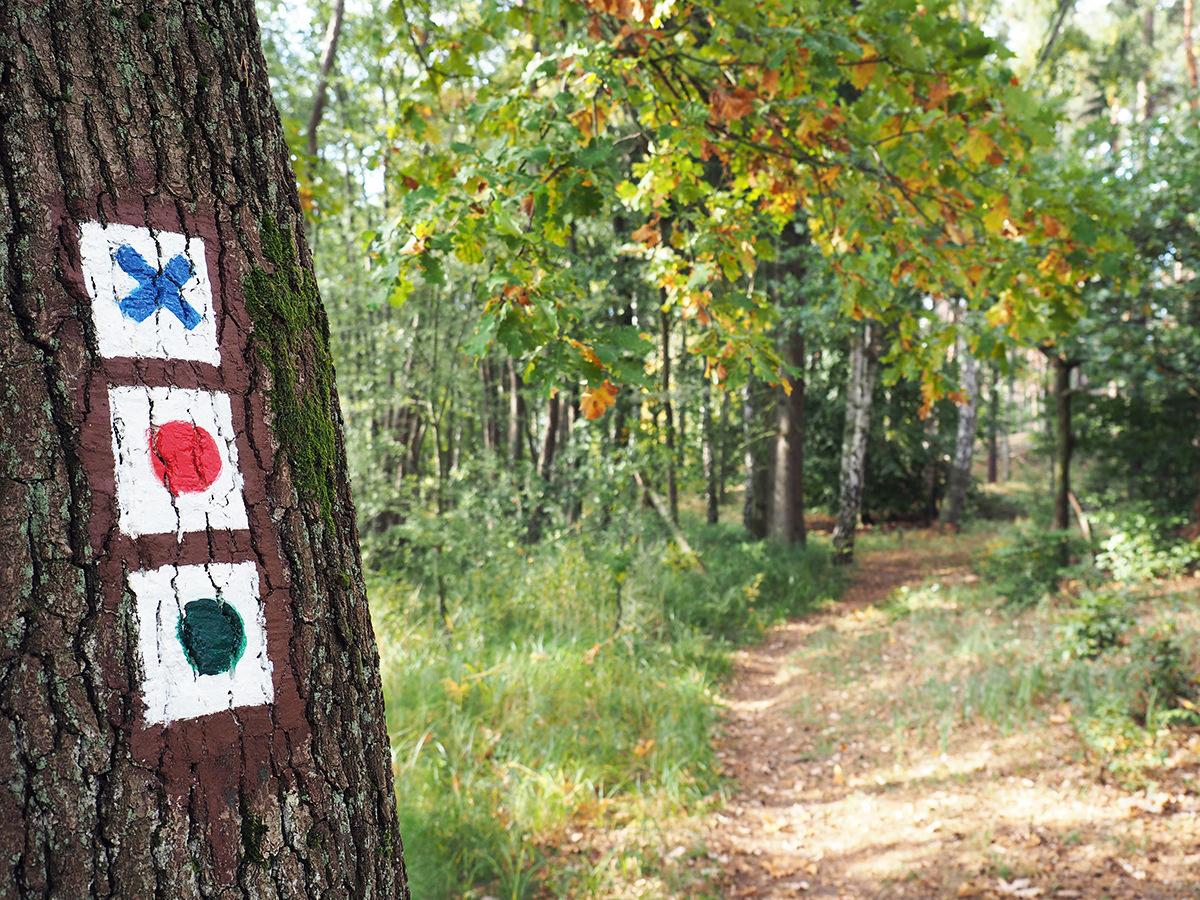 wandern uckermark markierungen