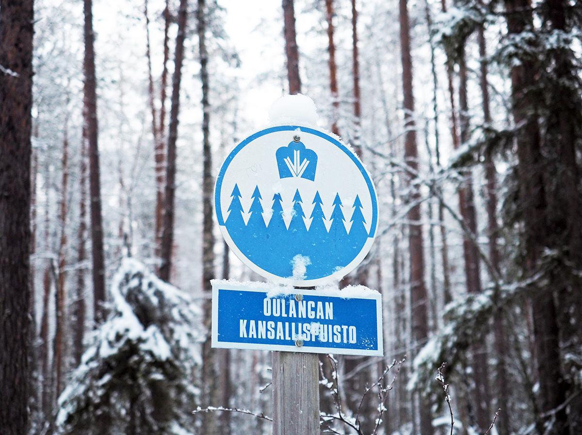 oulanka nationalpark wandern winter