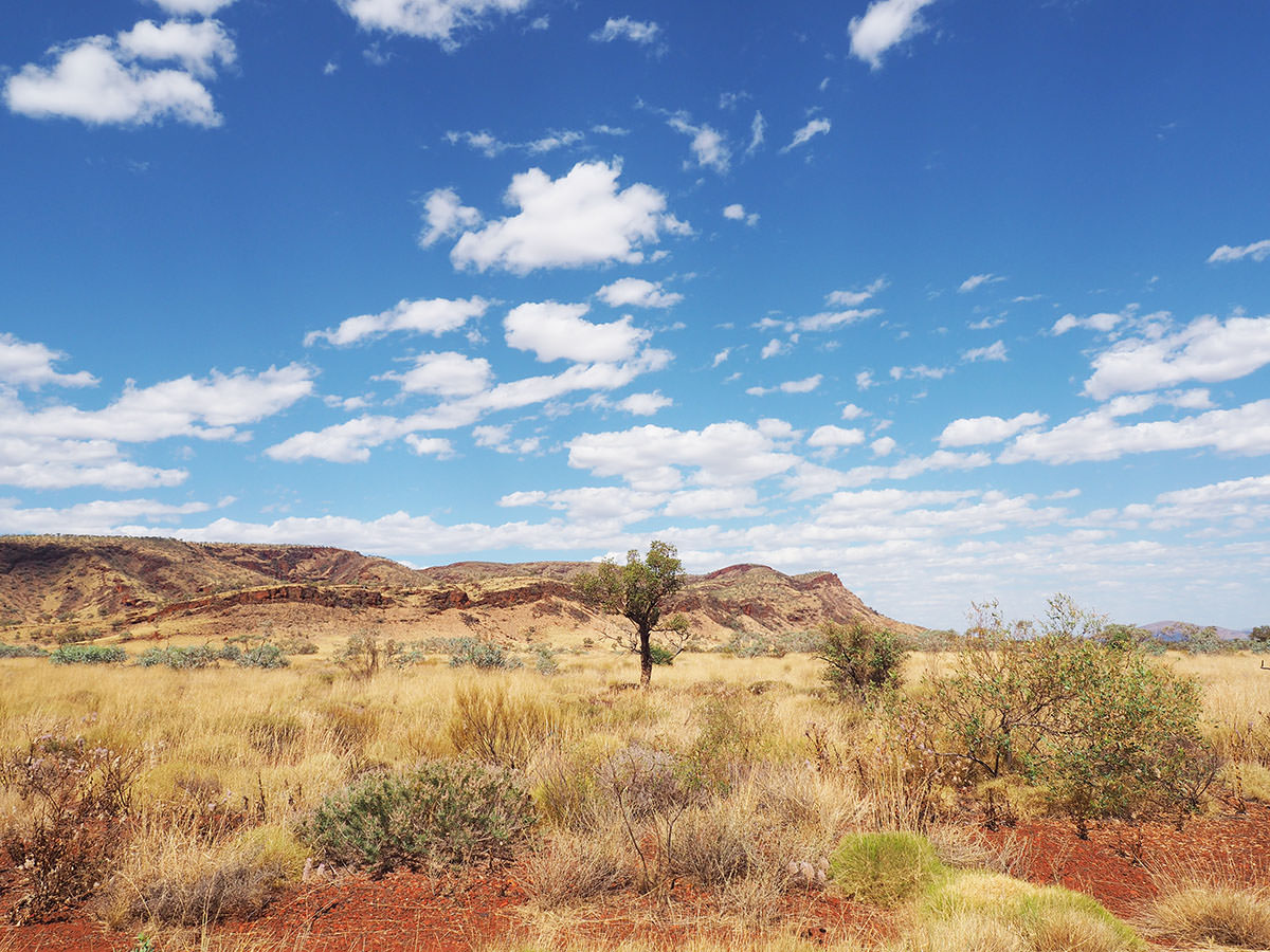 karijini nationalpark natur