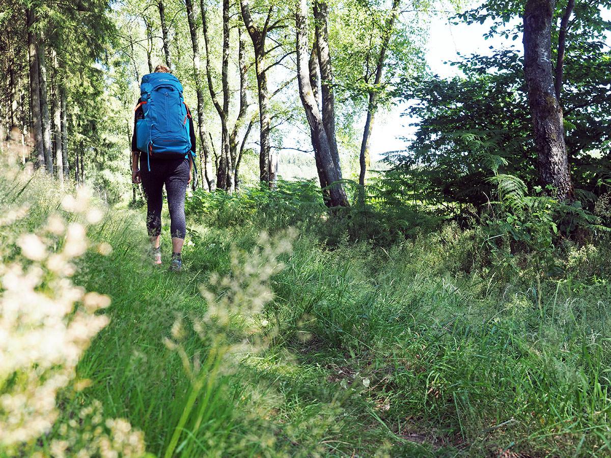 Zu Fuß durchs wilde Saarland auf dem Saar-Hunsrück-Steig | Fräulein Draußen